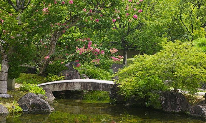 Matrimonio in giardino giapponese matrimonio da sogno - Piante per giardino giapponese ...