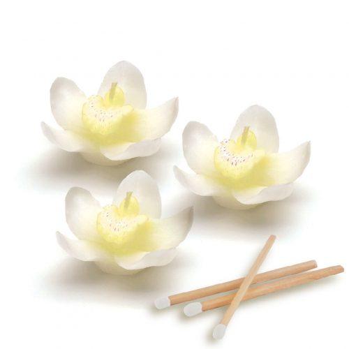 bomboniere-candele-orchidee