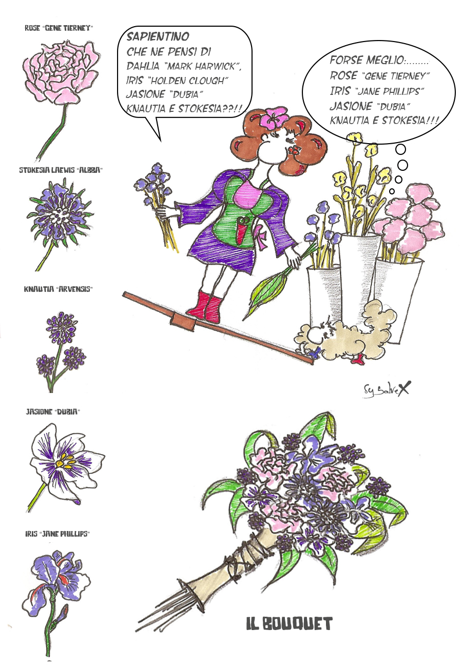 bouquet-viola-rosa