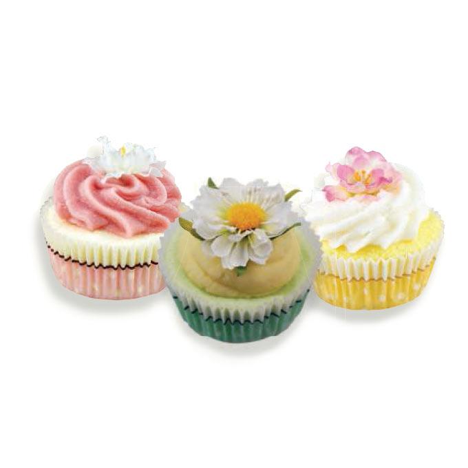 cupcake-bagno