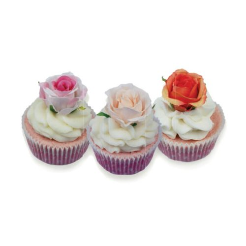 cupcake-bagno-BC052DB