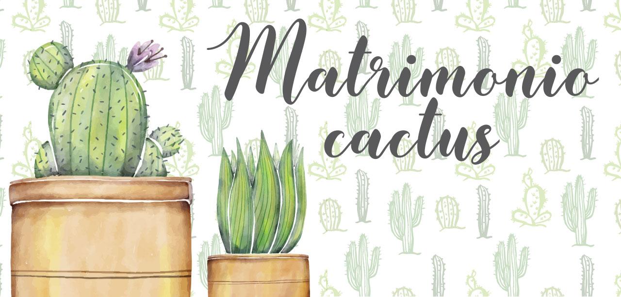 matrimonio-cactus